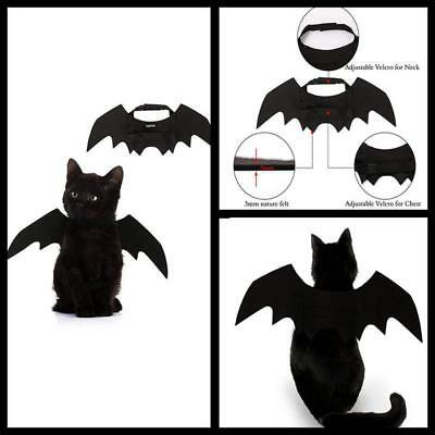 Pet adjustable Bat Wings Cute Cat Dog Halloween Party Costume Outfit Free Ship