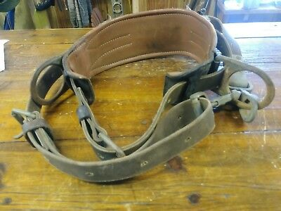 SAFETY HARNESS , TREE CLIMBERS BELT, BUCKINGHAM, THICK Klein Tools Safety Strap