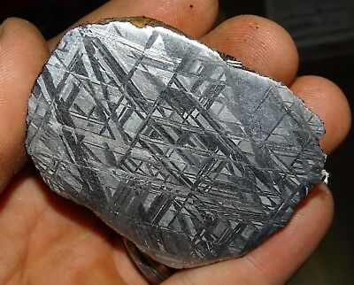 Amazing 298 Gm. Muonionalusta Etched Meteorite End Cut