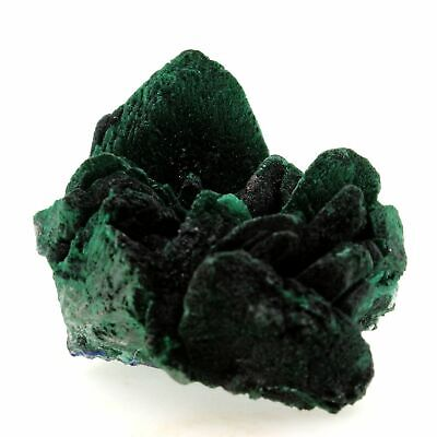 Malachite pseudo Azurite 461.4 ct. Milpillas Mine, Sonora, Mexico