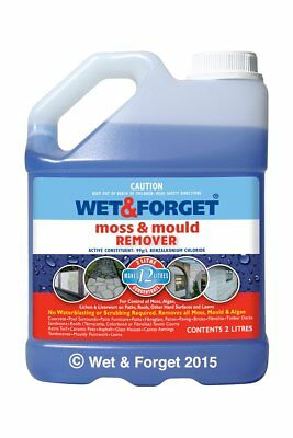 Wet and Forget 2 Litre Mould, Lichen and Algae Remover