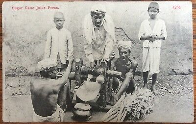 Antique Pc Indian Men Operating A Sugar Cane Juice Press Children Looking On