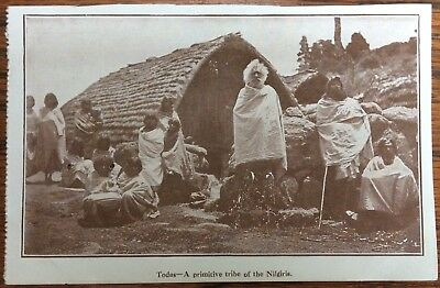 Antique Pc View Of The Todas Tribe Nilgiri Mountains Tamil Nadu Elders & Young