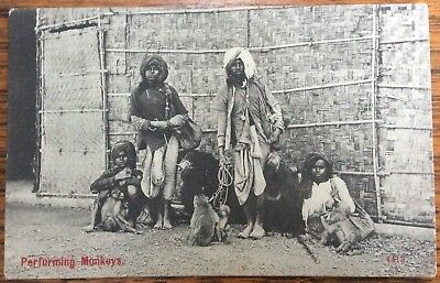 Antique Pc View Of Indian Performers With Monkeys And Two Black Bears India 1905