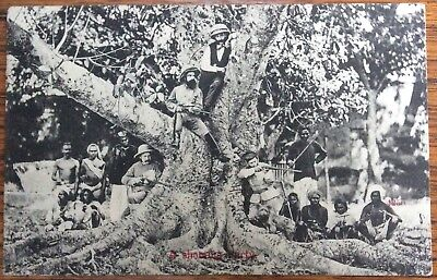 Antique Pc British Raj Hunting Party  Indian Natives Colonials In Tree & Guns