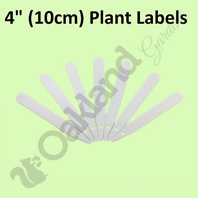 """10 x 4"""" White Plastic Plant Stick in Labels 10cm Seed Tray Garden Markers"""