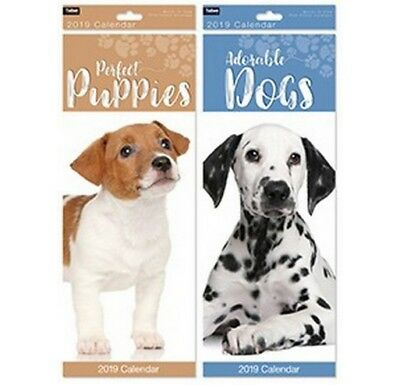 Slim Calendars 2019 - Cats, Kittens, Dogs, Puppies, Gardens, Cottages