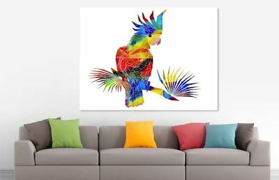 BEAUTY OF BIRDS-PARROTS COLORFUL Canvas collection Home decor wall print art