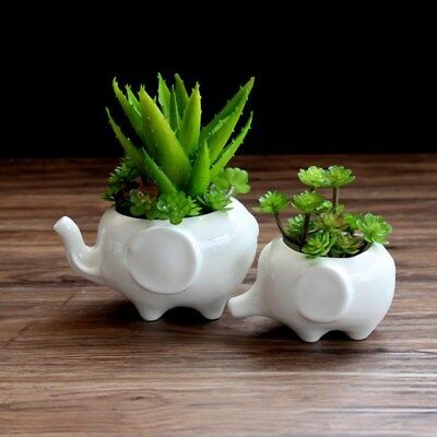 Animal Shaped Flower Pot Delicate Decorative Flower Pots Planter for Office Home