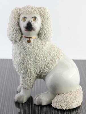 GENUINE ANTIQUE 19c STAFFORDSHIRE POTTERY SEATED DOG POODLE  c1850 NR!