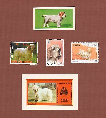 Clumber Spaniel dog postage stamps MNH and trade card set of 5