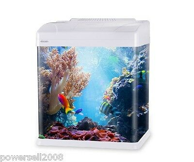 Glass Enclosed Small Ecological Gifts Aquarium/Square Fish Tank White &$