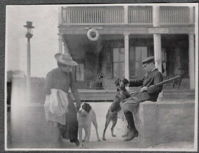 Vintage Photograph German Pointer Dogs Queen Anne Cottage Virginia Beach Photo