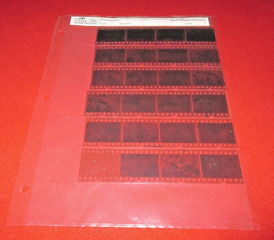 Print File Archival 35mm Negative Preservers 35-7B, 20 sheets, used & excellent!