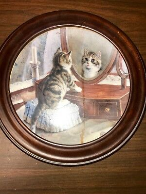 the hamilton collection collectible cat plates in frames good condition
