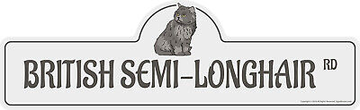 "Asian Semi-Longhair Street Sign Cat Lover Funny Home Décor 18"" Wide"