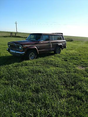 1979 Jeep Cherokee  1979 jeep Cherokee chief