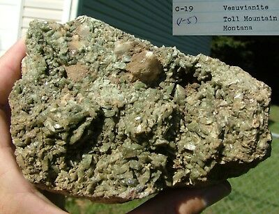 LARGE specimen VESUVIANITE CRYSTALS TOLL MOUNTAIN MONTANA old 1965 collection
