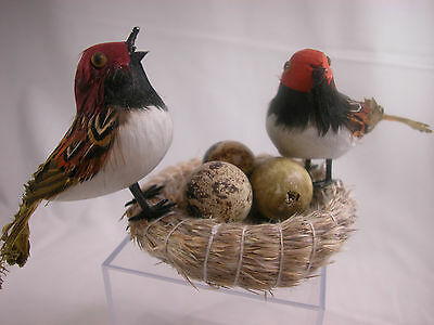 Closeout Birds and Nest  Set Feather Friend CLOSE OUT Stock Home Decor  #B916