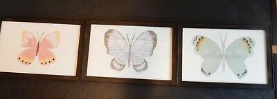 Pottery Barn Kids Set of 3 Butterfly Pictures NIB