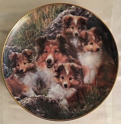 """Danbury Mint Plate Shellie Family """"Family Time"""" Simon Mendez With Certificate"""