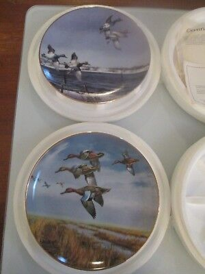 On The Wing Duck Collector Plates Set of 2 Danbury Mint David Maass