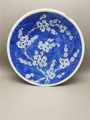 Antique Large 19Th Century Chinese Prunus Blossom Kangxi Charger Plate