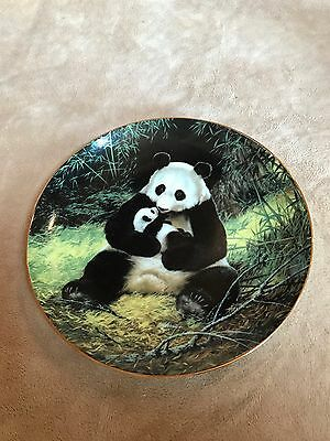 Vintage~Panda Collector Plate~Will Nelson~1st Issue~#1544F~BRADEX~1988~EUC~Decor