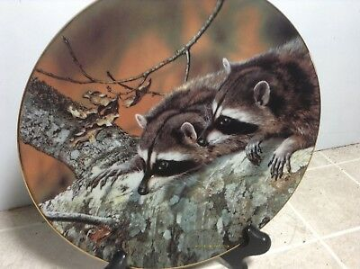 Fascination Collector Plate 1989 Our Woodland Friends by W.S. George