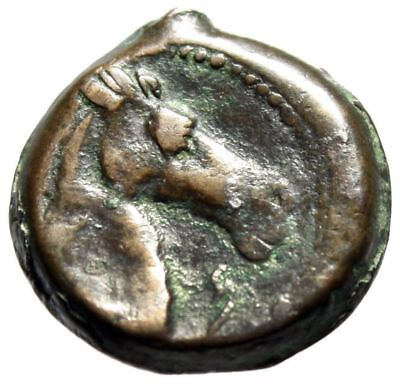 "Zeugitania, Carthage AE20 ""Tanit & Head of Horse, Punic Letter Beth"" Rare"