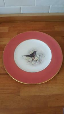 A Large Royal Worcester Handpainted Plate Of A Blackbird Signed W.powell