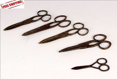 5 Pc Old Vintage Iron Unique Shape Different Handcrafted Scissors / Shears 8775
