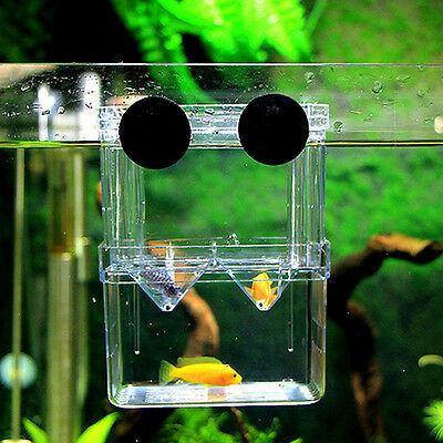 Aquarium Fish Tanks Guppy Double Breeding Breeder Rearing Trap Box Hatchery