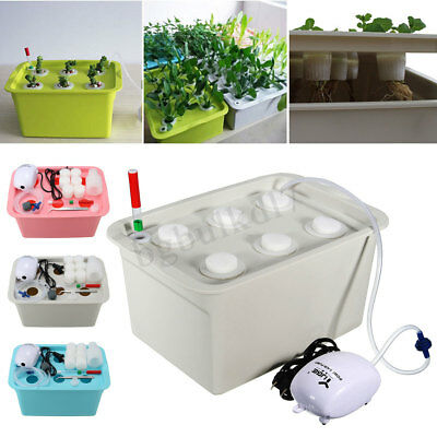 6 Holes Plant Site Hydroponic System Grow Kit Water Bubble Indoor Air Pump Box