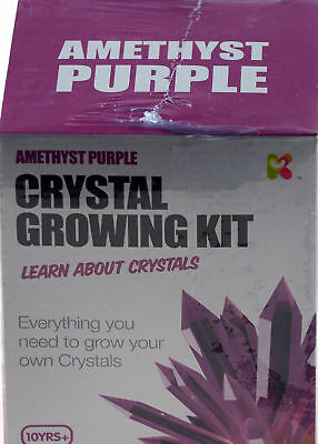 Grow Your Own Crystals - Crystal Growing Kit Science Set Amethyst Purple 10+