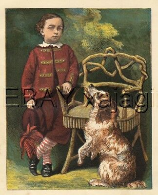 DOG Brittany Spaniel & Boy, Antique 1860s Color Chromolith Print
