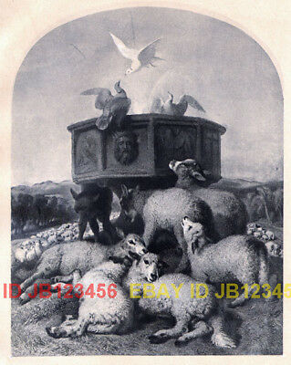 Sheep & Doves, Gorgeous Sir Edwin Landseer Antique Collotype Print 1870s