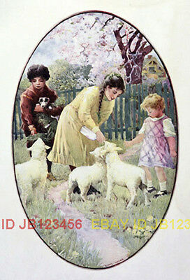 Sheep Lambs Being Fed by Sisters & Brother 1904 CHILDRENs Print