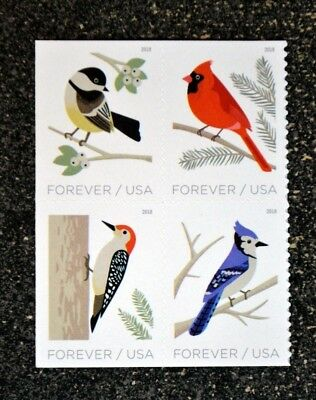 2018USA #5317-5320 Forever Birds in Winter - Block of 4 from booklet  Mint NH