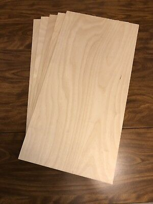 "5 Pieces 5/8"" Baltic Birch Plywood 11 3/4"" By 23 1/2"""