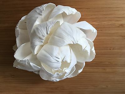 10 X Balsa/ Sola Flower 4 (11cm in diameter)