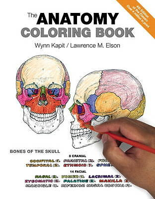 The Anatomy Coloring Book by Wynn Kapit Book   NEW Free Post AU