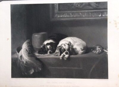 The Cavalier's Pets  Landseer-Outrim   Vernon Gallery 1850 Dogs cani