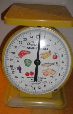 Vintage American Family Scale Kitchen 24 LBS