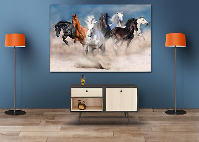 Beautiful COLORFUL ANIMALS SCENERY-Canvas collection Home decor wall print art