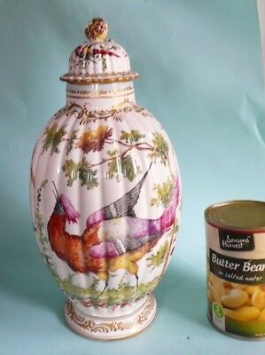 19th century Porcelain Ribbed vase with Exotic Birds..................ref.1257