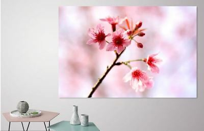 Beautiful Colorful LOVELY FLOWERS Canvas collection Home decor wall print art