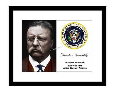Theodore Roosevelt 8x10 Signed photo print president seal Teddy TR autographed