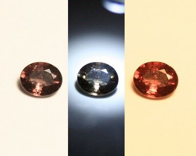0.49ct Colour Change Garnet - Custom Cut Gem with Rare Superb Colour Change