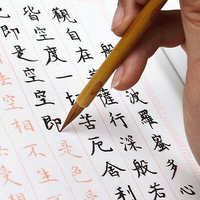 Chinese Calligraphy Brush Pen Painting Small Regular Script Writing Wolf Hair